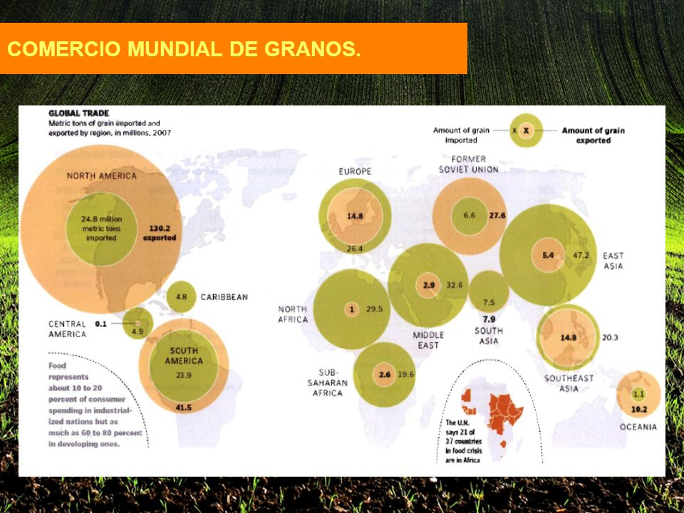 COMERCIO MUNDIAL DE GRANOS.