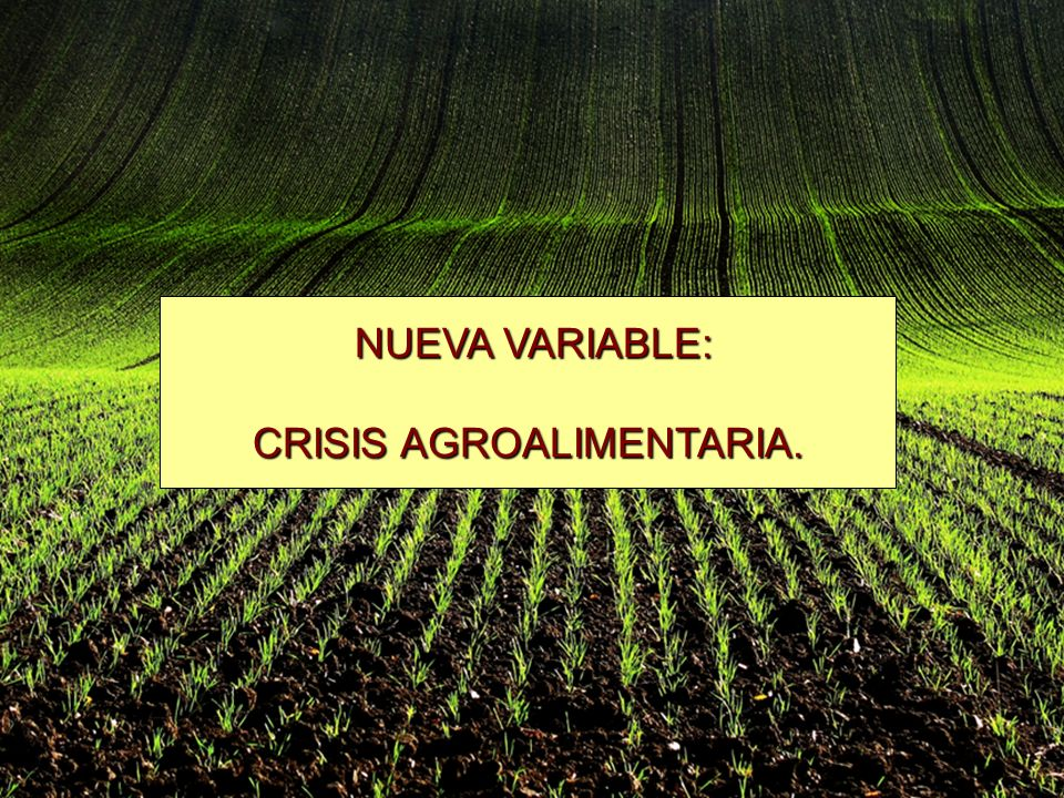 NUEVA VARIABLE: NUEVA VARIABLE: CRISIS AGROALIMENTARIA.