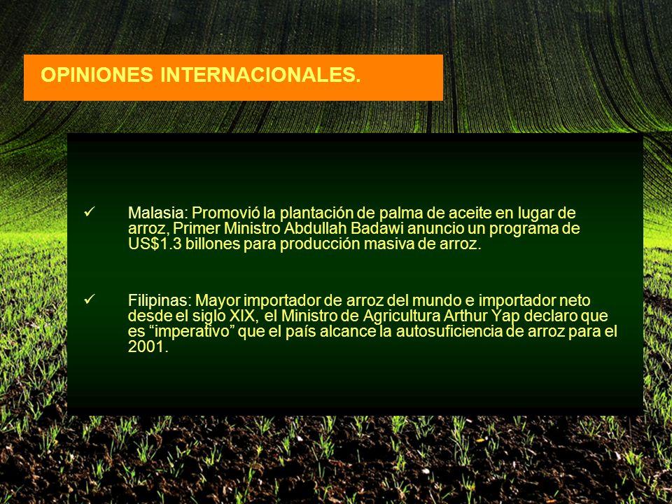 Malasia: Promovió la plantación de palma de aceite en lugar de arroz, Primer Ministro Abdullah Badawi anuncio un programa de US$1.3 billones para producción masiva de arroz.