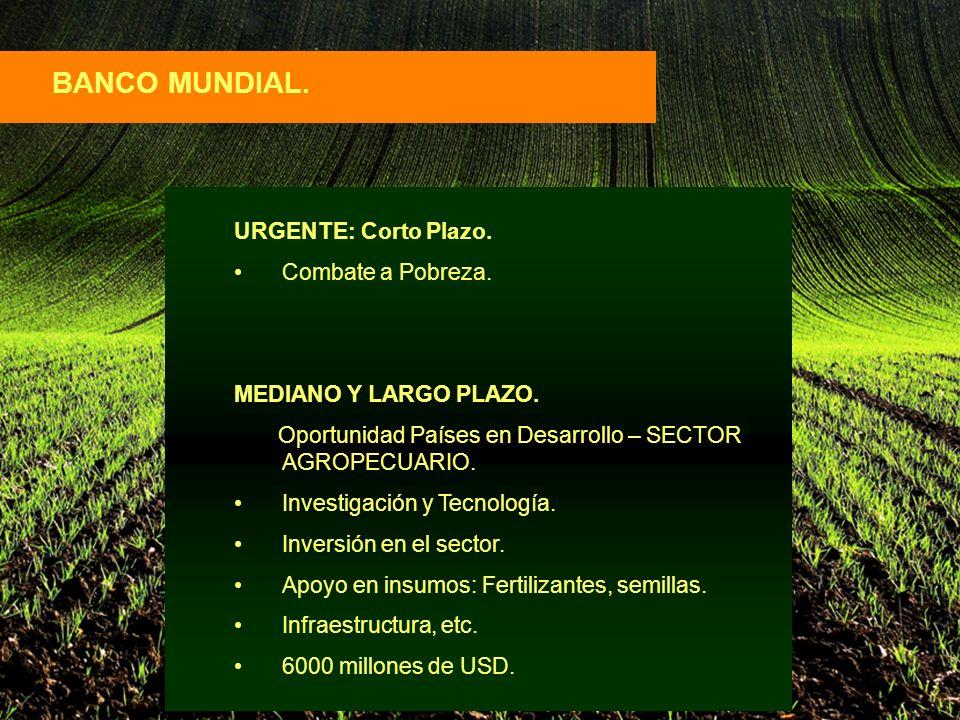 BANCO MUNDIAL. URGENTE: Corto Plazo. Combate a Pobreza.