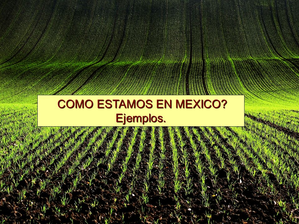 COMO ESTAMOS EN MEXICO COMO ESTAMOS EN MEXICO Ejemplos.