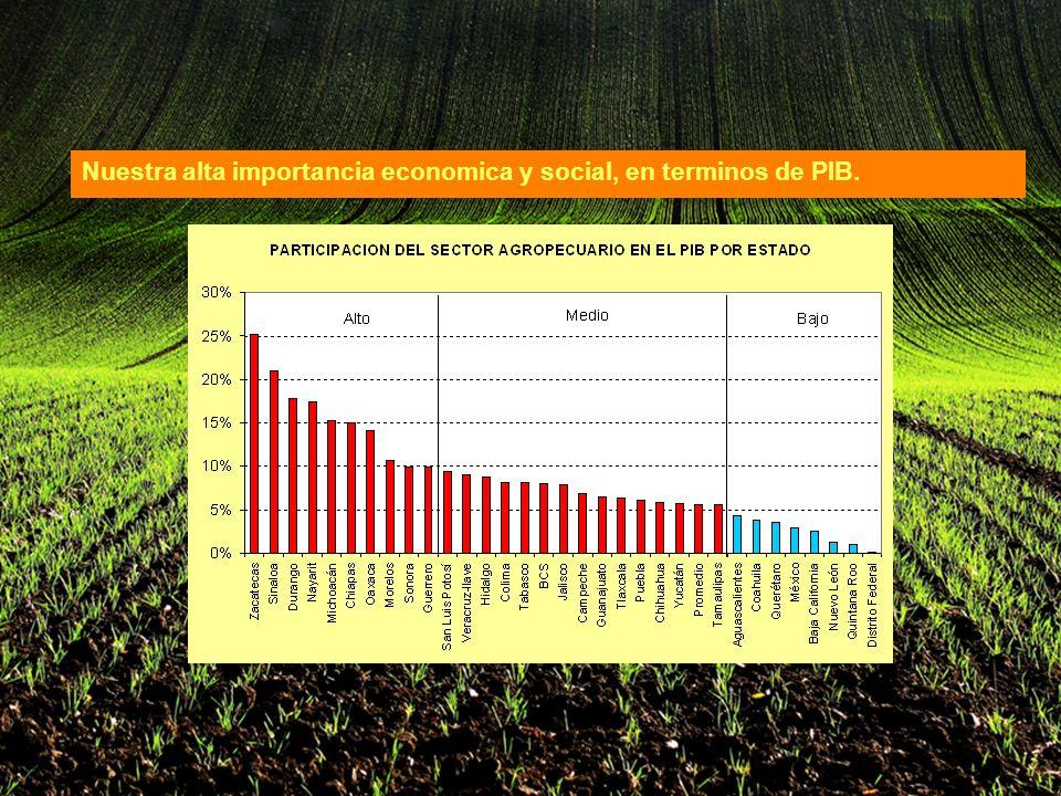 Nuestra alta importancia economica y social, en terminos de PIB.