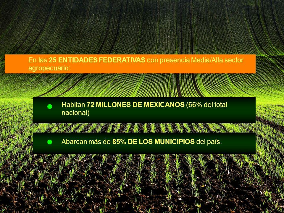 En las 25 ENTIDADES FEDERATIVAS con presencia Media/Alta sector agropecuario: Habitan 72 MILLONES DE MEXICANOS (66% del total nacional) Abarcan más de 85% DE LOS MUNICIPIOS del país.