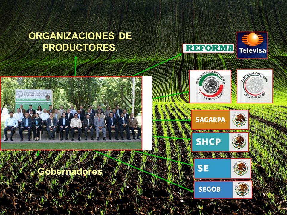 ORGANIZACIONES DE PRODUCTORES. Gobernadores