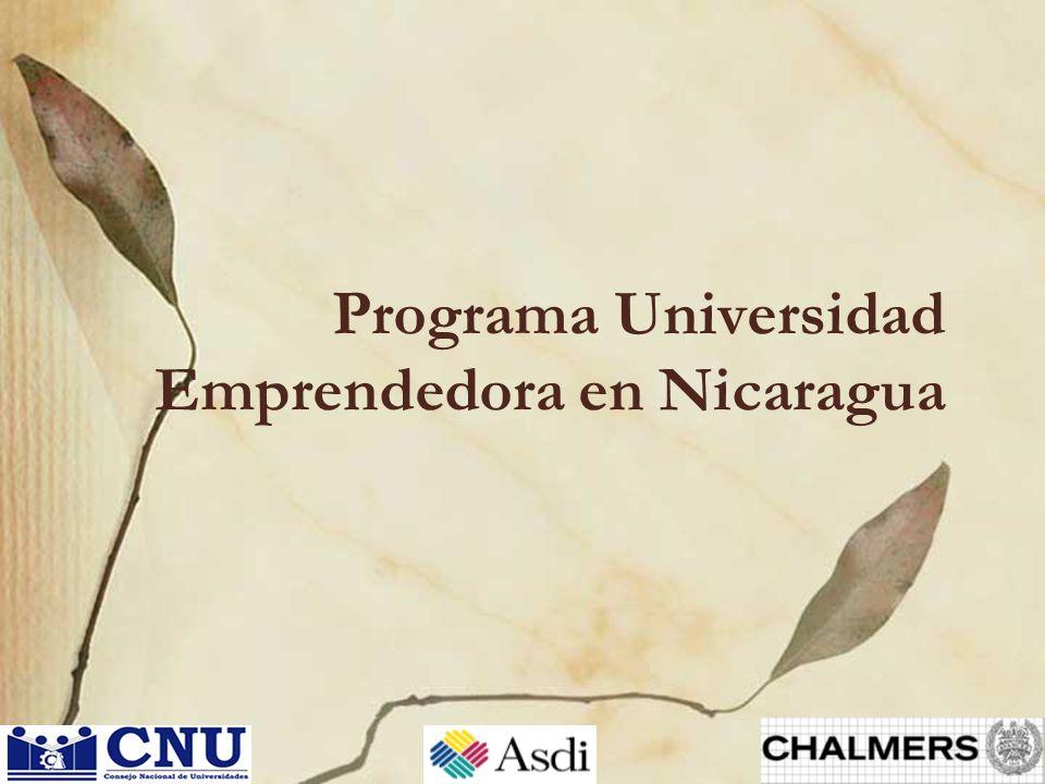 22 de febrero, 2012Alemán, Scheinberg, Norgren, Alänge Universidad Emprendedora 13 Principales metas y resultados obtenidos: 1.Establecer los roles y responsabilidades que el CNU y las Universidades tienen en el sistema actual y futuro de innovación.