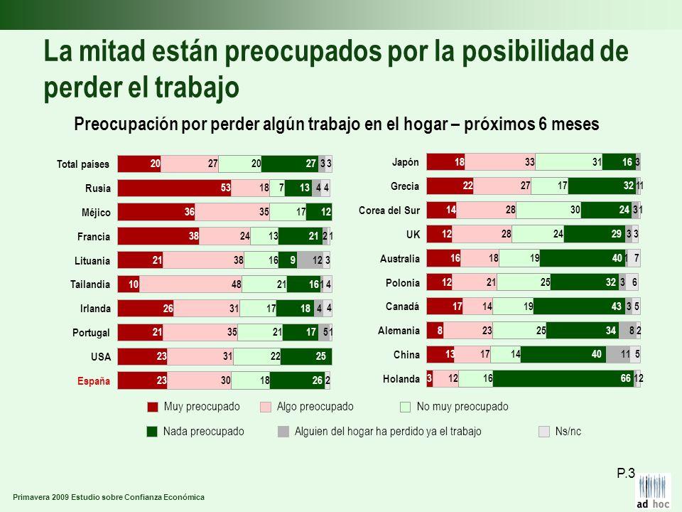 Primavera 2009 Estudio sobre Confianza Económica La mitad están preocupados por la posibilidad de perder el trabajo Preocupación por perder algún trab