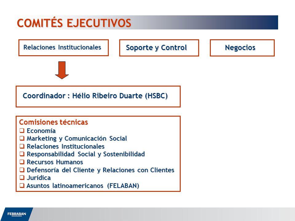 COMITÉS EJECUTIVOS COMITÉS EJECUTIVOS Relaciones Institucionales Soporte y Control Negocios Coordinador : Hélio Ribeiro Duarte (HSBC) Comisiones técni