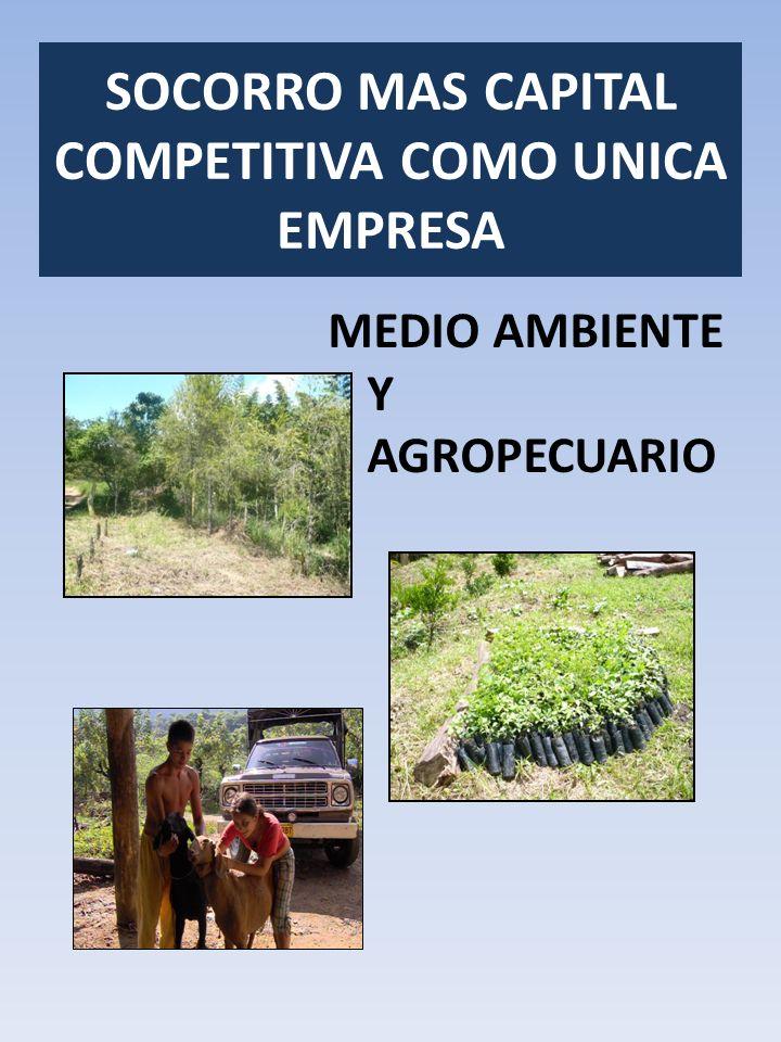 MEDIO AMBIENTE Y AGROPECUARIO SOCORRO MAS CAPITAL COMPETITIVA COMO UNICA EMPRESA