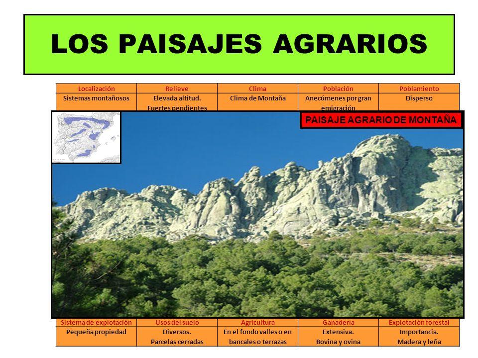 LocalizaciónRelieveClimaPoblaciónPoblamiento Sistemas montañososElevada altitud. Fuertes pendientes Clima de MontañaAnecúmenes por gran emigración Dis