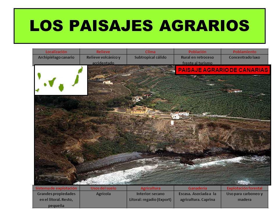 LocalizaciónRelieveClimaPoblaciónPoblamiento Archipiélago canarioRelieve volcánico y accidentado Subtropical cálidoRural en retroceso frente al turism