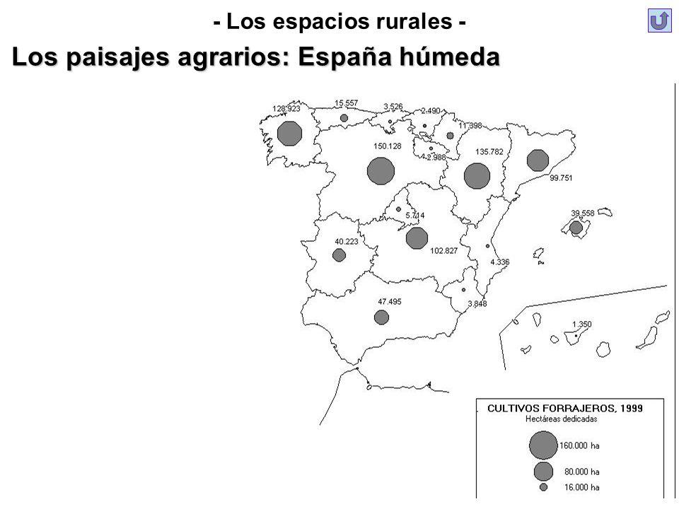 Los paisajes agrarios: España húmeda