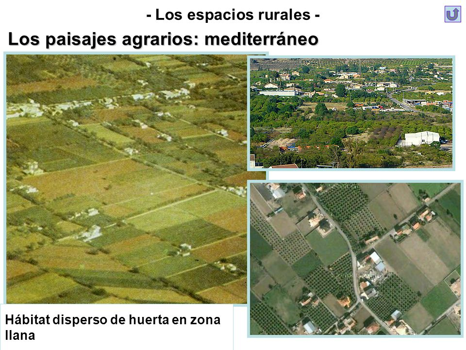 Hábitat disperso de huerta en zona llana - Los espacios rurales - Los paisajes agrarios: mediterráneo