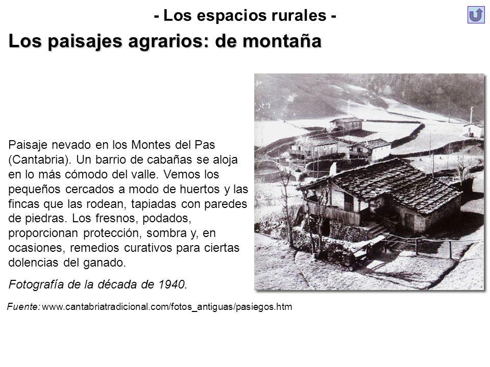 Paisaje nevado en los Montes del Pas (Cantabria). Un barrio de cabañas se aloja en lo más cómodo del valle. Vemos los pequeños cercados a modo de huer