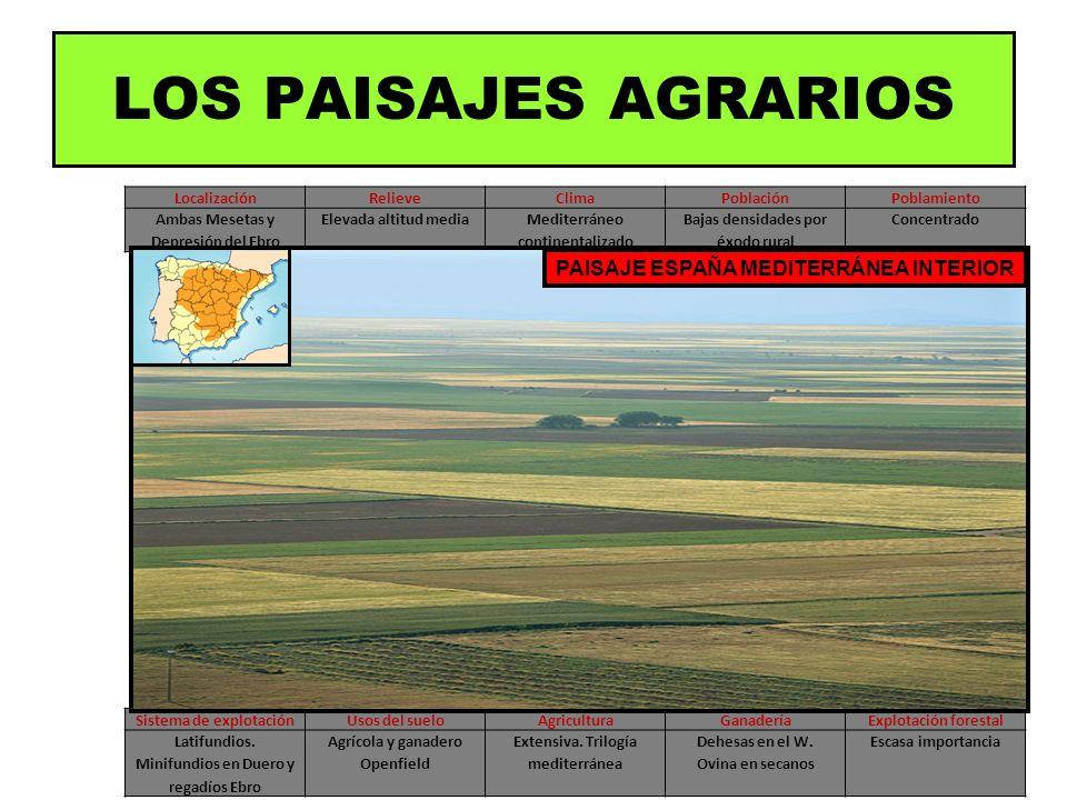 LocalizaciónRelieveClimaPoblaciónPoblamiento Ambas Mesetas y Depresión del Ebro Elevada altitud mediaMediterráneo continentalizado Bajas densidades po