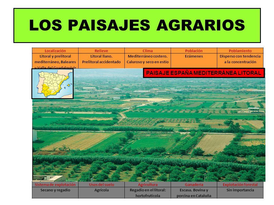 LocalizaciónRelieveClimaPoblaciónPoblamiento Litoral y prelitoral mediterráneo, Baleares y Valle del Guadalquivir Litoral llano. Prelitoral accidentad