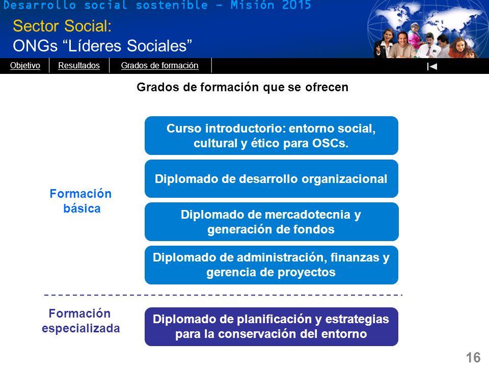 16 Sector Social: ONGs Líderes Sociales Formación básica Formación especializada Curso introductorio: entorno social, cultural y ético para OSCs. Dipl