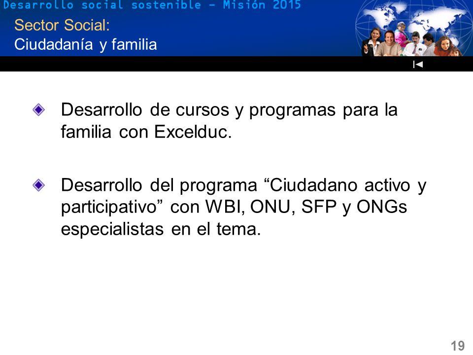 19 Sector Social: Ciudadanía y familia Desarrollo de cursos y programas para la familia con Excelduc. Desarrollo del programa Ciudadano activo y parti