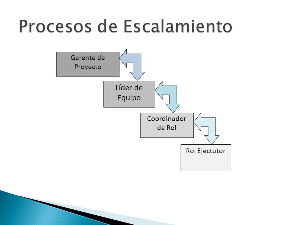 Líder de Equipo Gerente de Proyecto Coordinador de Rol Rol Ejectutor