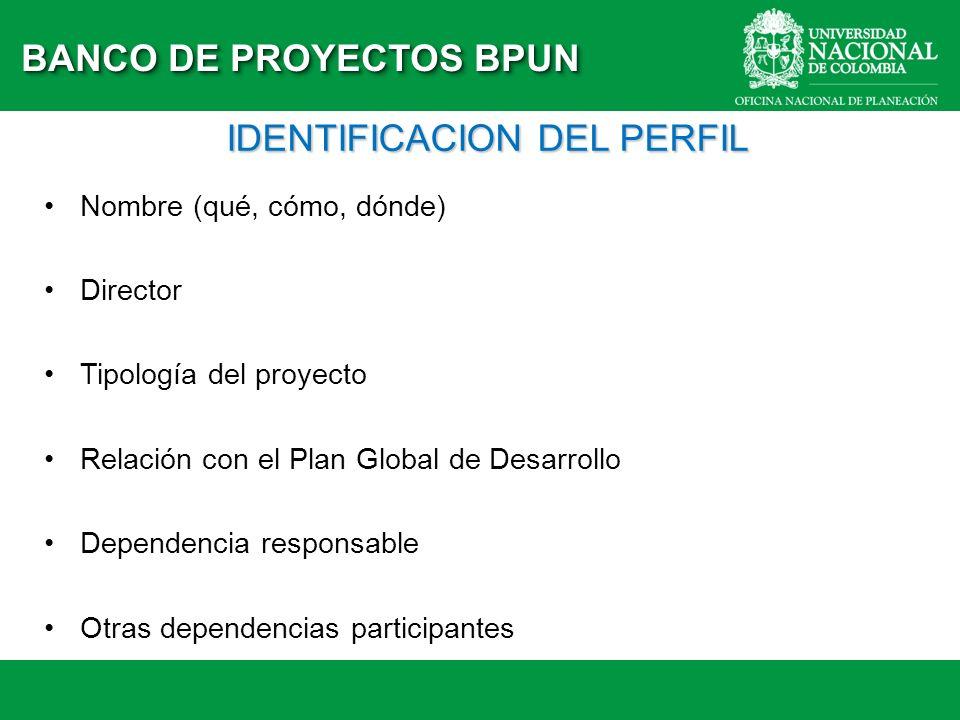 IDENTIFICACION DEL PERFIL Nombre (qué, cómo, dónde) Director Tipología del proyecto Relación con el Plan Global de Desarrollo Dependencia responsable