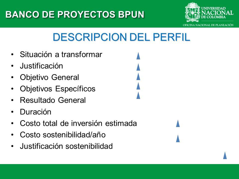 DESCRIPCION DEL PERFIL Situación a transformar Justificación Objetivo General Objetivos Específicos Resultado General Duración Costo total de inversió