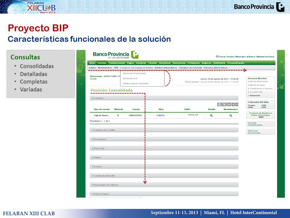 xxxx,xx Proyecto BIP Características funcionales de la solución Consultas Consolidadas Detalladas Completas Variadas