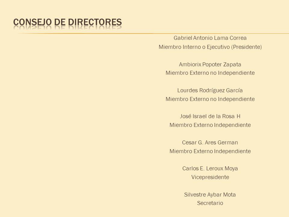 Gabriel Antonio Lama Correa Miembro Interno o Ejecutivo (Presidente) Ambiorix Popoter Zapata Miembro Externo no Independiente Lourdes Rodríguez García