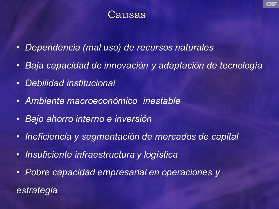 Causas Dependencia (mal uso) de recursos naturales Baja capacidad de innovación y adaptación de tecnología Debilidad institucional Ambiente macroeconó