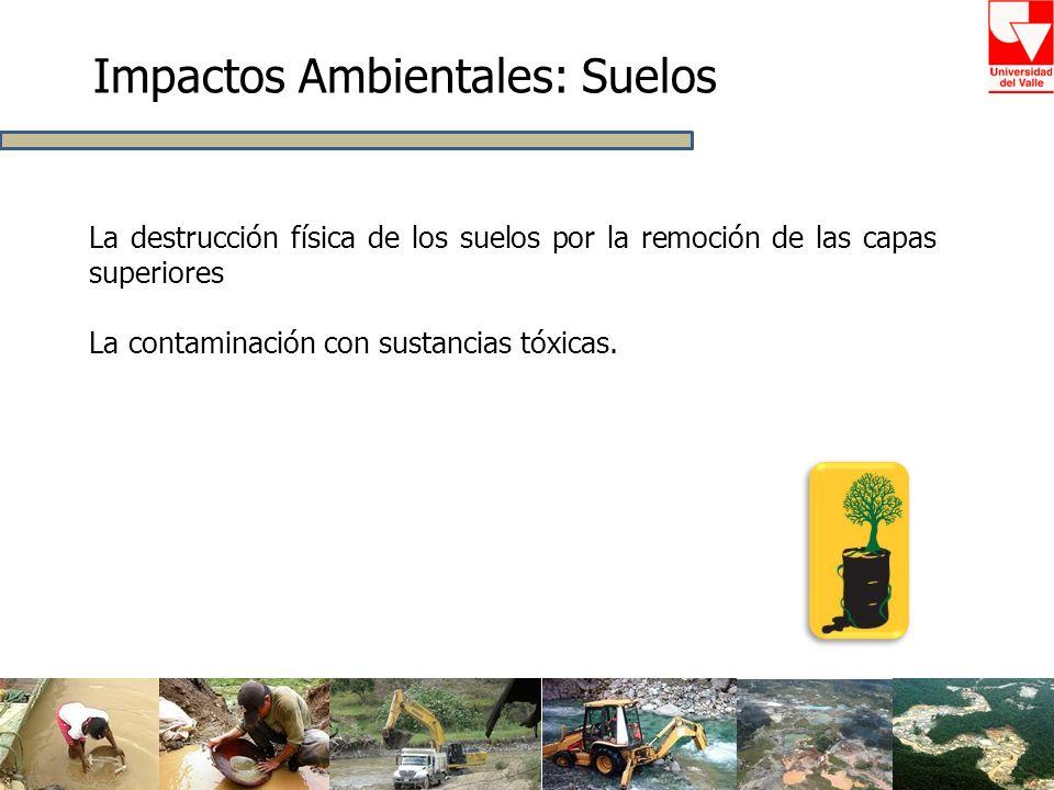 Impactos Ambientales: Suelos La destrucción física de los suelos por la remoción de las capas superiores La contaminación con sustancias tóxicas.