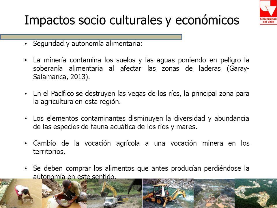 Impactos socio culturales y económicos Seguridad y autonomía alimentaria: La minería contamina los suelos y las aguas poniendo en peligro la soberanía