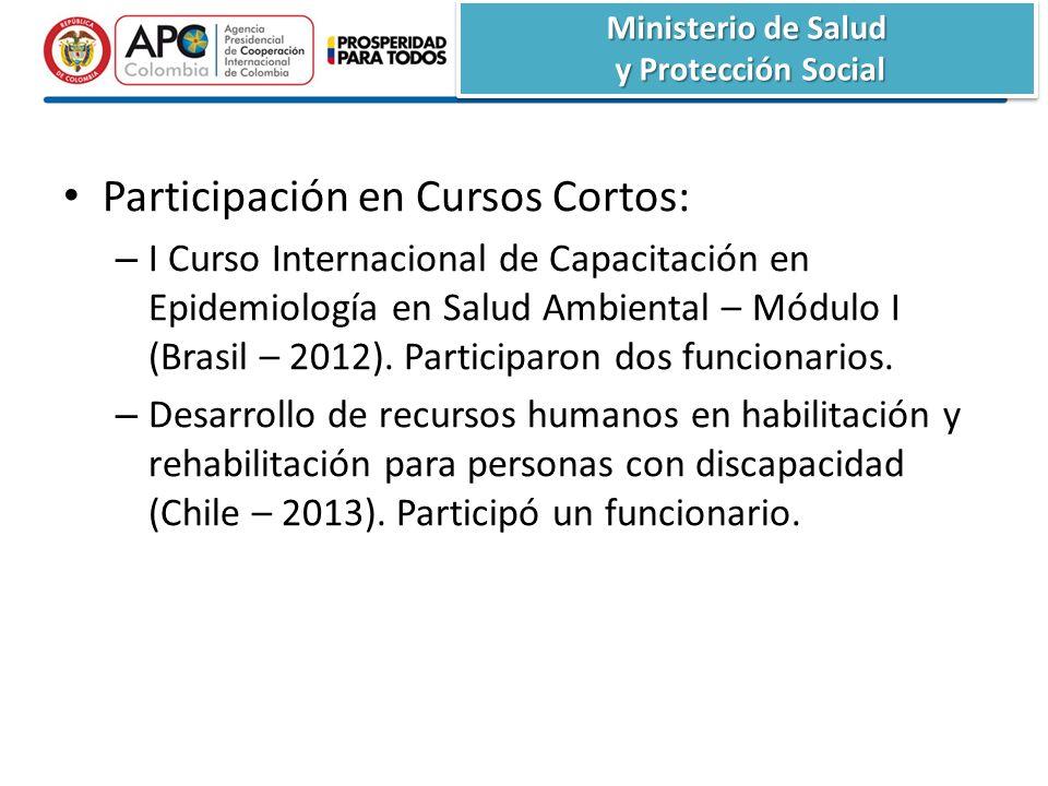 Participación en Cursos Cortos: – I Curso Internacional de Capacitación en Epidemiología en Salud Ambiental – Módulo I (Brasil – 2012).