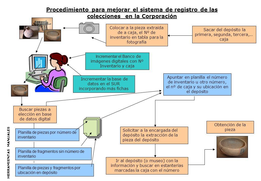 Procedimiento para mejorar el sistema de registro de las colecciones en la Corporación Incrementar la base de datos en el SUR incorporando más fichas