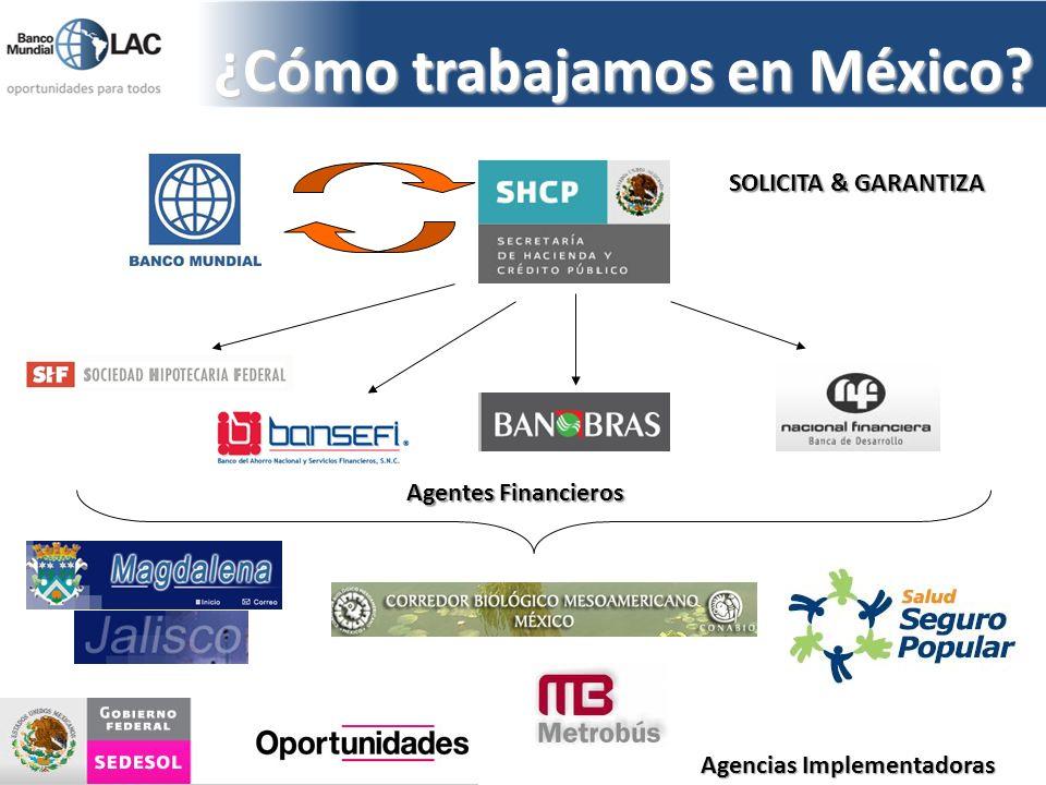 ¿Cómo trabajamos en México? SOLICITA & GARANTIZA Agentes Financieros Agencias Implementadoras