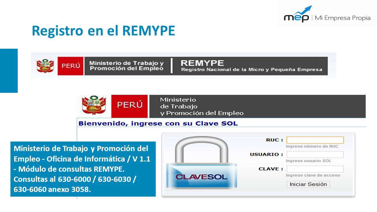 Registro en el REMYPE Ministerio de Trabajo y Promoción del Empleo - Oficina de Informática / V 1.1 - Módulo de consultas REMYPE.