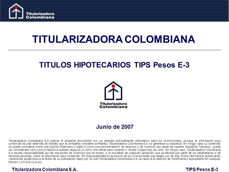 Titularizadora Colombiana S.A. TIPS Pesos E-3 Desarrollo y Crisis