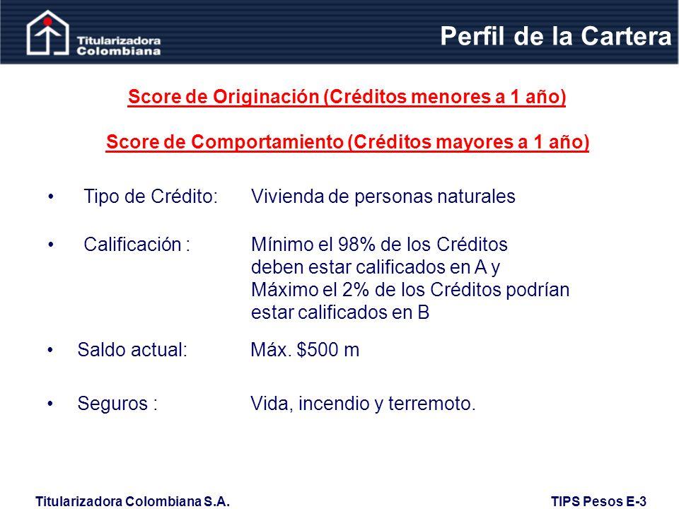 Titularizadora Colombiana S.A.TIPS Pesos E-3 Perfil de la Cartera Saldo actual: Máx.