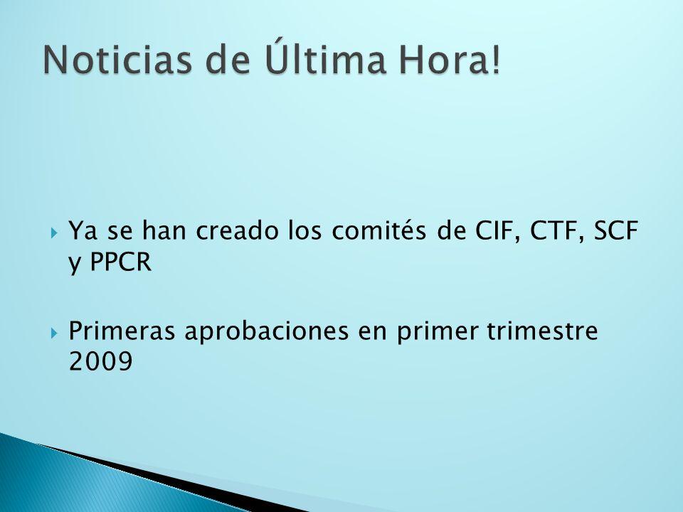 Ya se han creado los comités de CIF, CTF, SCF y PPCR Primeras aprobaciones en primer trimestre 2009