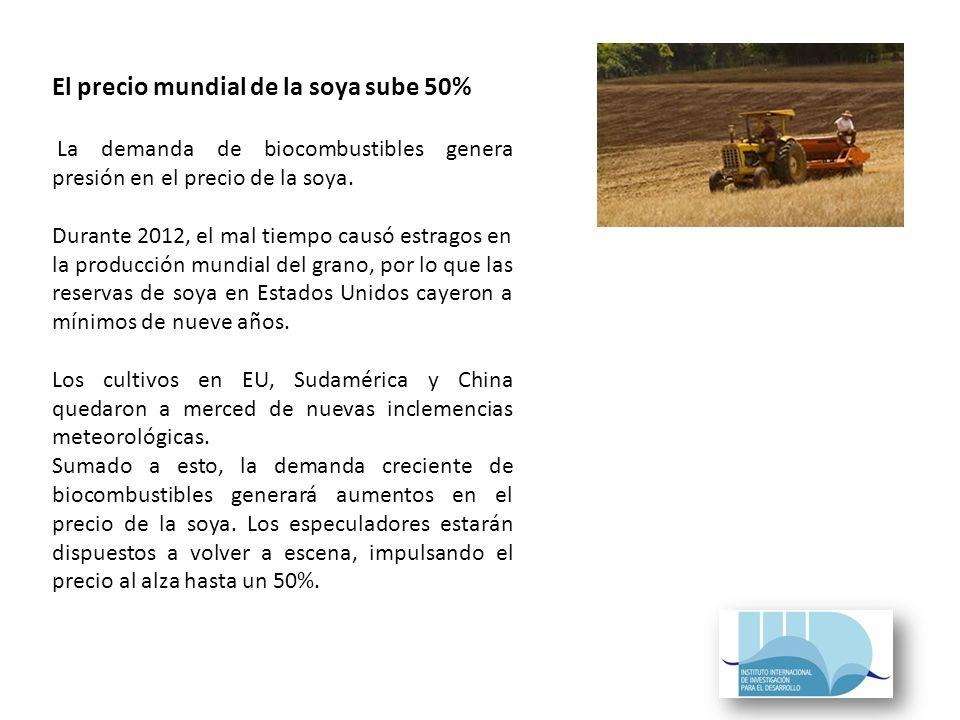 El precio mundial de la soya sube 50% La demanda de biocombustibles genera presión en el precio de la soya.