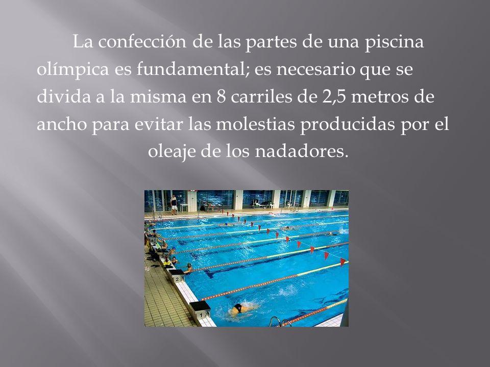 La confección de las partes de una piscina olímpica es fundamental; es necesario que se divida a la misma en 8 carriles de 2,5 metros de ancho para ev