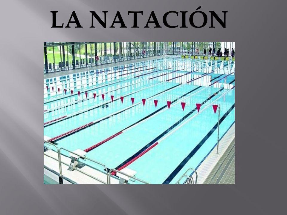 Tradicionalmente la piscina mide 21 metros anchos por 50 metros de largo, con una profundidad 1.80 metros aproximadamente