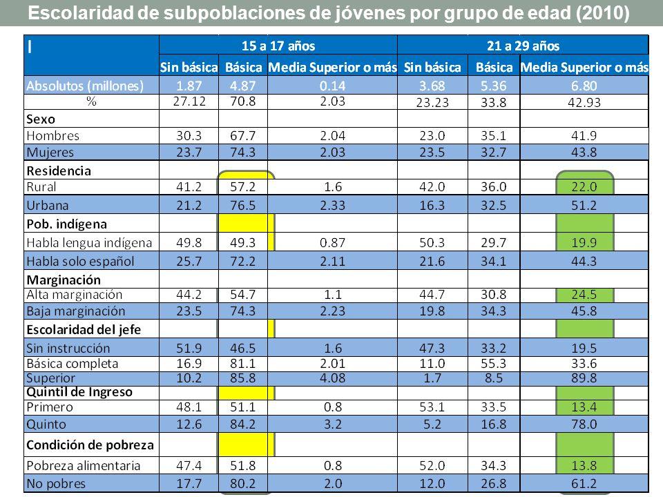 Escolaridad de subpoblaciones de jóvenes por grupo de edad (2010)