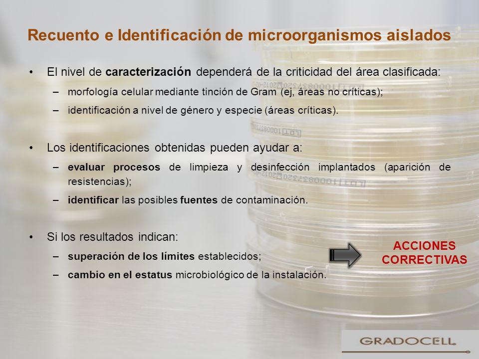 Recuento e Identificación de microorganismos aislados El nivel de caracterización dependerá de la criticidad del área clasificada: –morfología celular