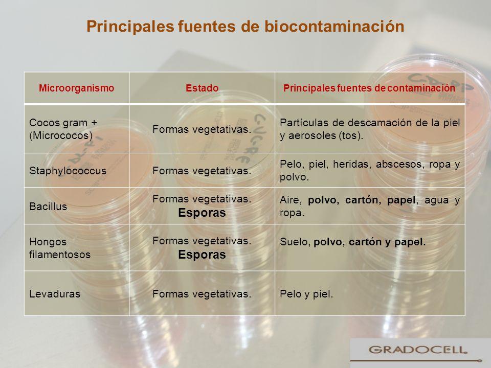 Principales fuentes de biocontaminación 28 MicroorganismoEstadoPrincipales fuentes de contaminación Cocos gram + (Micrococos) Formas vegetativas. Part