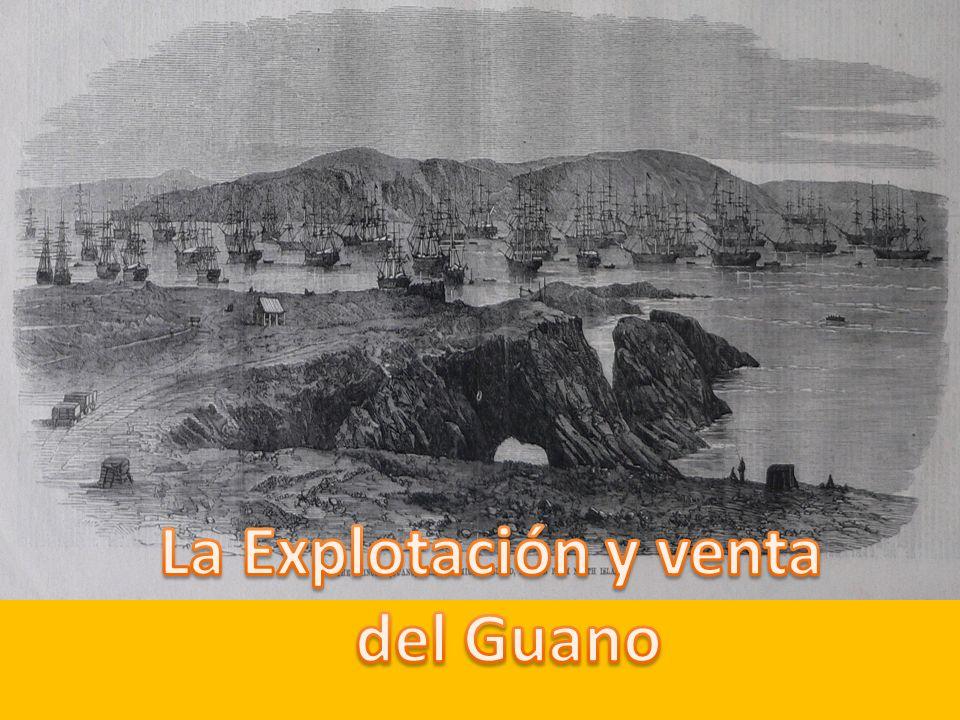 ¿Quién inicio el comercio guanero.Fue Francisco Quiroz el primero en arriesgarse.