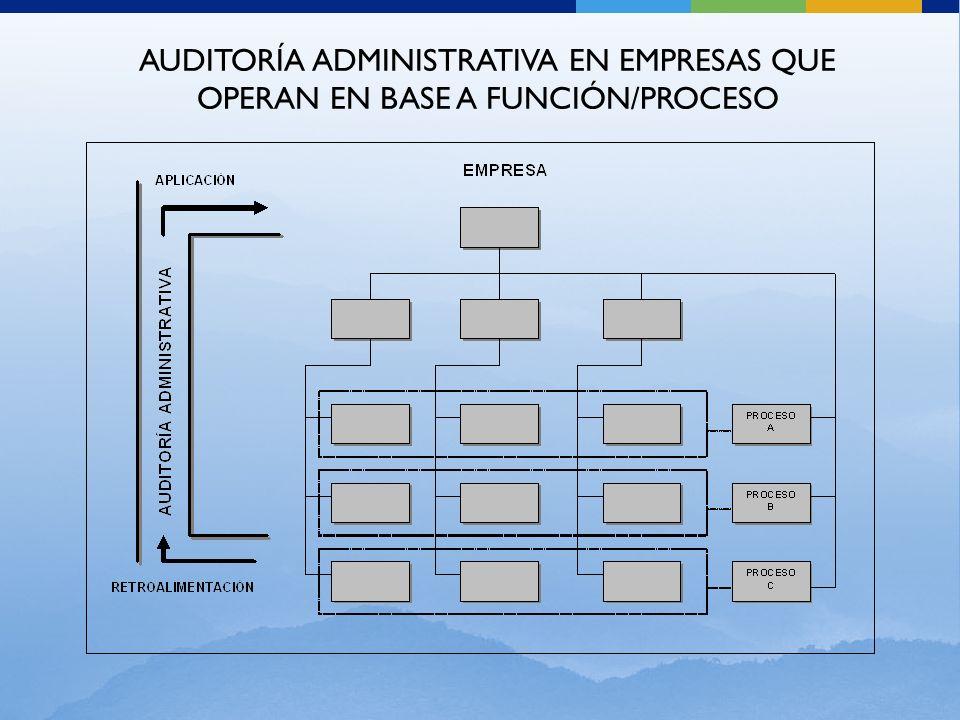 AUDITORÍA ADMINISTRATIVA EN EMPRESAS QUE OPERAN EN BASE A FUNCIÓN/PROCESO