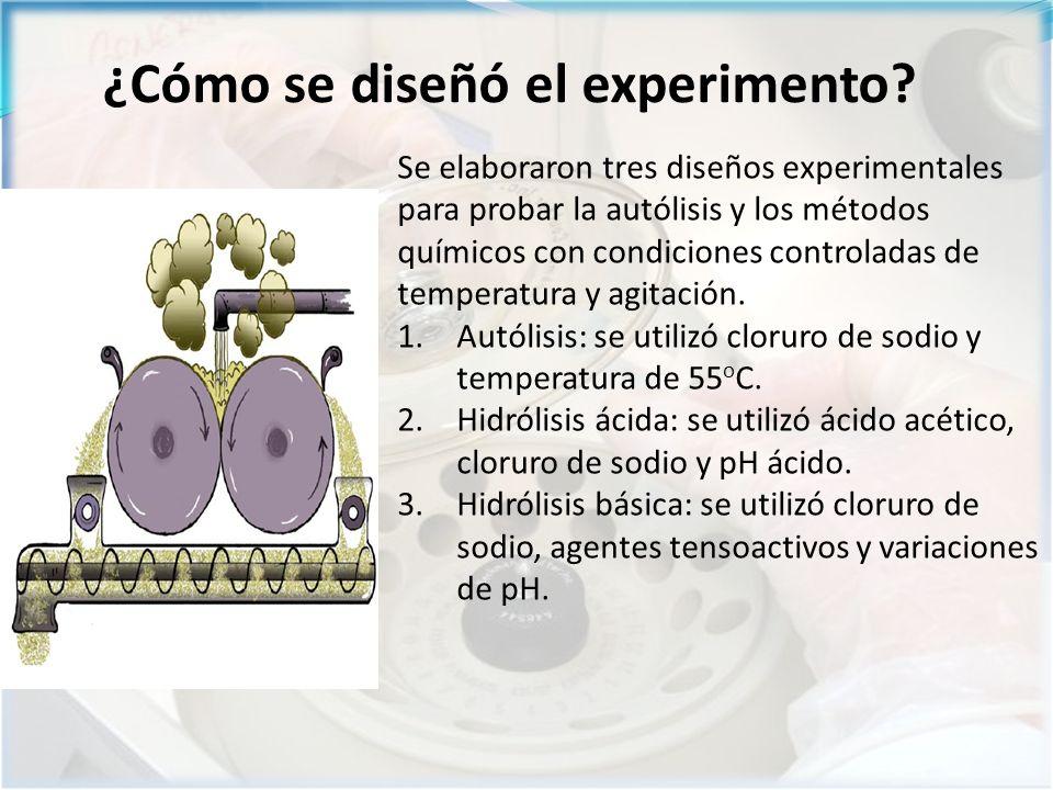 Se elaboraron tres diseños experimentales para probar la autólisis y los métodos químicos con condiciones controladas de temperatura y agitación.