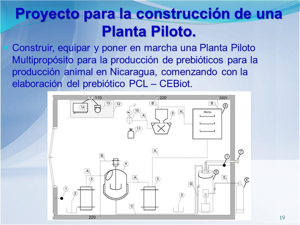 Proyecto para la construcción de una Planta Piloto.