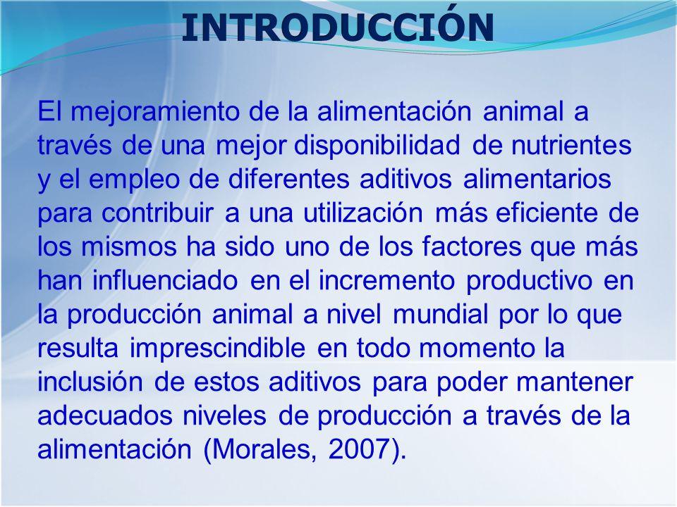 El mejoramiento de la alimentación animal a través de una mejor disponibilidad de nutrientes y el empleo de diferentes aditivos alimentarios para contribuir a una utilización más eficiente de los mismos ha sido uno de los factores que más han influenciado en el incremento productivo en la producción animal a nivel mundial por lo que resulta imprescindible en todo momento la inclusión de estos aditivos para poder mantener adecuados niveles de producción a través de la alimentación (Morales, 2007).