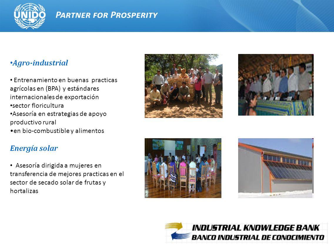 12 Agro-industrial Entrenamiento en buenas practicas agrícolas en (BPA) y estándares internacionales de exportación sector floricultura Asesoría en es