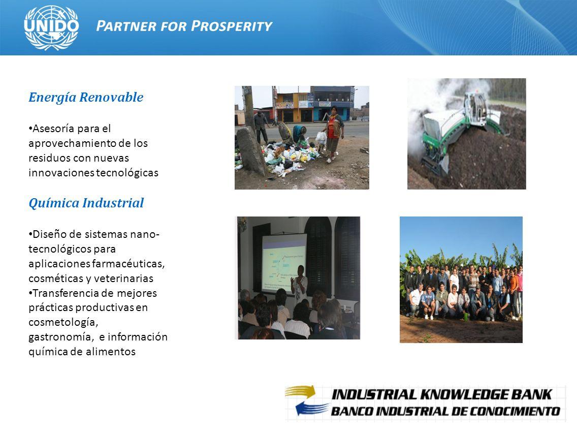 15 Energía Renovable Asesoría para el aprovechamiento de los residuos con nuevas innovaciones tecnológicas Química Industrial Diseño de sistemas nano-