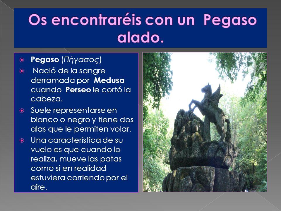 Pegaso (Πήγασος) Nació de la sangre derramada por Medusa cuando Perseo le cortó la cabeza. Suele representarse en blanco o negro y tiene dos alas que